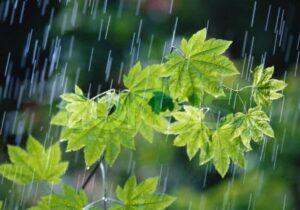 سامانه بارشی از سهشنبه وارد آذربایجانشرقی میشود